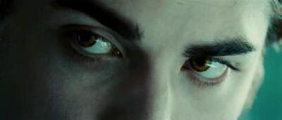 Twilight-Stills-3-twilight-serie-1