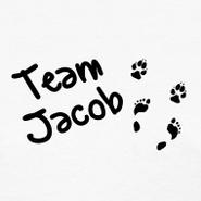 Team-jacob design (1)