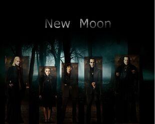 New moon 008