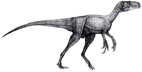 Resultado de imagen de iliosuchus