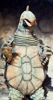 King Tortoise