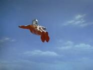 Seven Flight