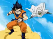 Goku&Piccolo(DBSagas)