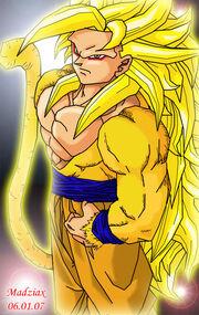 20110402031237!Goku SSJ6