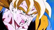 Hurt Goku
