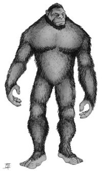 Monkey Creature