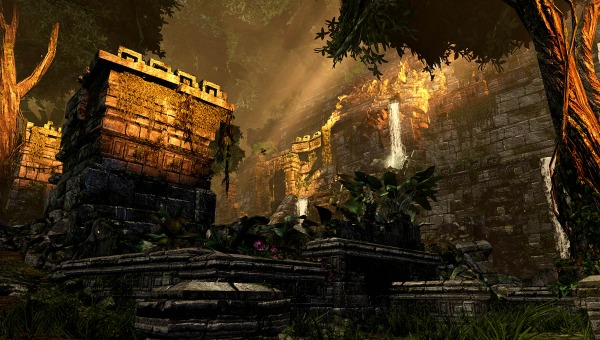 File:Jungle (4).jpg