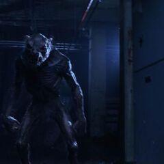A low-level Lycan in <i>Underworld: Awakening</i>
