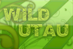 File:WILD.jpg