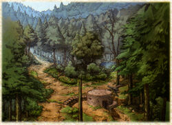 Kloden Wildwood