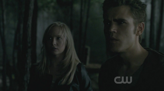 File:Caroline-Stefan-2x3.png
