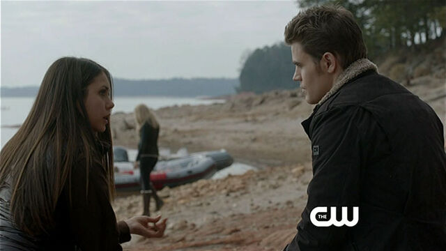 File:Elena and stefan dtrh.jpg