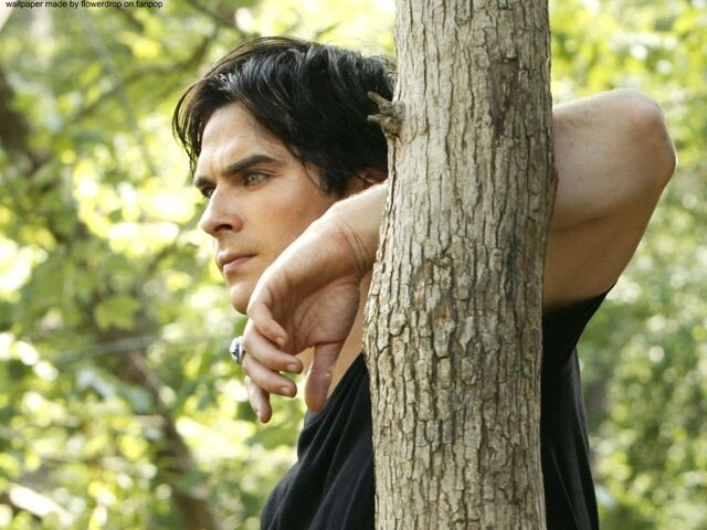 File:Damon-Salvatore-damon-salvatore-28037560-1024-768.jpg