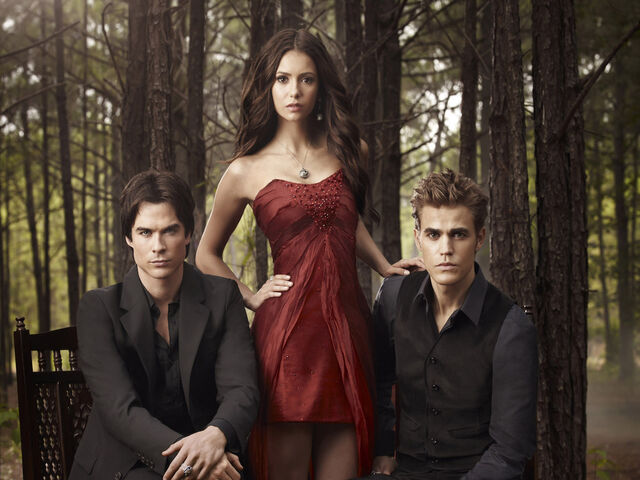 File:The-Vampire-Diaries-the-vampire-diaries-20830152-1024-768.jpg