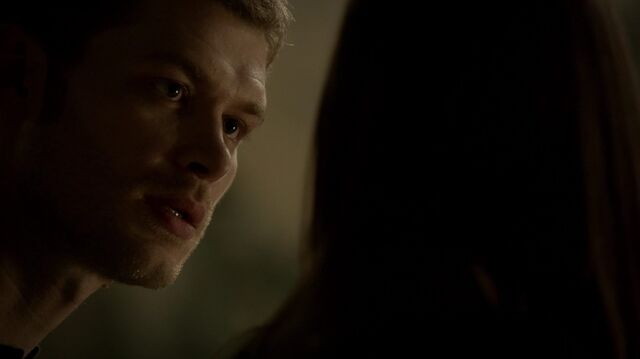File:Normal TheOriginals210-0924Klaus-Hayley.jpeg