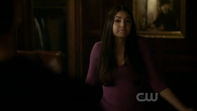 File:2x20-The-Last-Day-damon-and-elena-21541424-1280-720.jpg