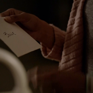 Damon's Letters to Bonnie