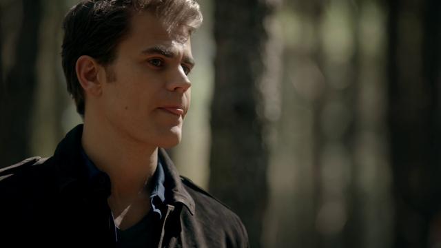 File:719-101-Stefan~Alaric.png