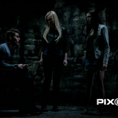 Stefan, Lexi and Elena