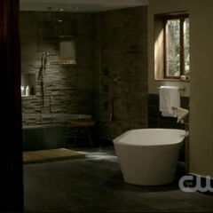 Damon's bathroom