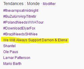 File:We Will Always Support Damon & Elena.jpg