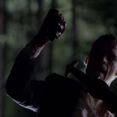 Klaus killing Tyler's pack