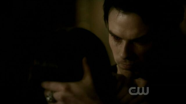 File:2x20-The-Last-Day-damon-and-elena-21541628-1280-720.jpg