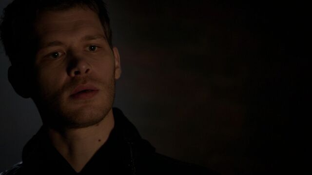 File:Normal TheOriginals209-2610Klaus.jpeg