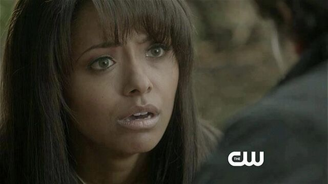 File:TVD-4x15-Stand-By-Me-Preview-the-vampire-diaries-33634454-700-394.jpg