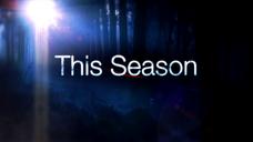 EpisodesSeasons