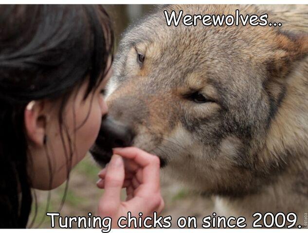 File:Chicks.jpg