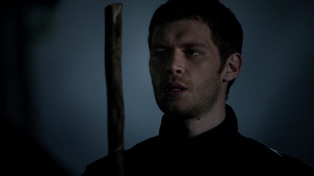 File:Normal TheOriginals204-1779Klaus.jpeg