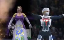 Zelda-Sheik 2k14