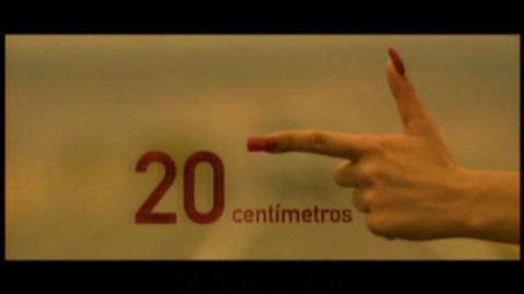 20 centímetros (2005) - Open-ended Trailer (e29510)
