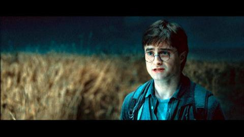 Harry Potter and the Deathly Hallows Part 1 (2010) - Clip No One Else Is Going To Die For Me