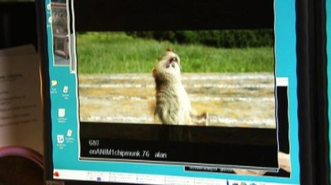 Thumbnail for version as of 18:53, September 25, 2012