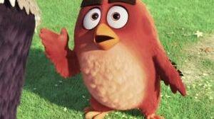 The Angry Birds Movie (German Trailer 6)