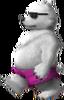 Polar Bear SSB3DS