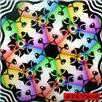 K.K. D & B Cover