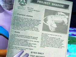 Project Shadow File