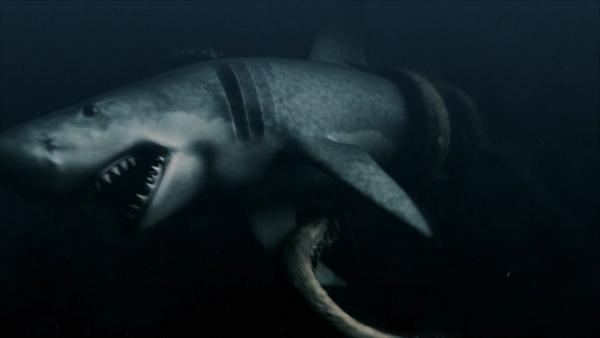 Mega Shark   Villains Wiki   Fandom powered by Wikia