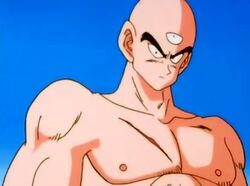 Tien vs a saibamen youtube 007 0001