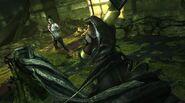 Brigmore Witches 12