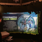 Pterodactyls Information 2