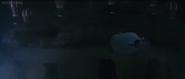 Millennian UFO lifting attempt