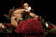 Volks dd beatrice02
