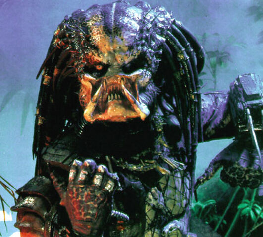 File:Predator 800 800.jpg