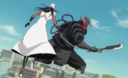 Tosen fighting Komamura Bankai