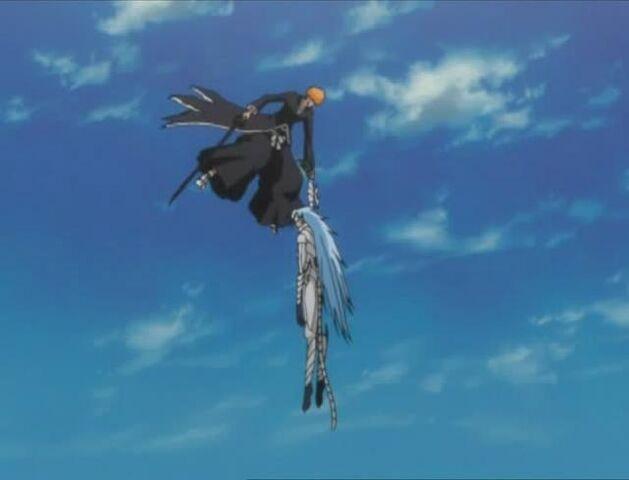 File:Ichigo defeats Grimmjow.jpg