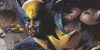 Wolverine (Marvel Zombies)